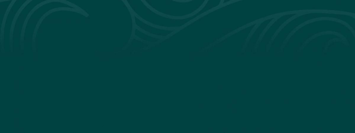 Te Putorino o Pahauwera Edition 13